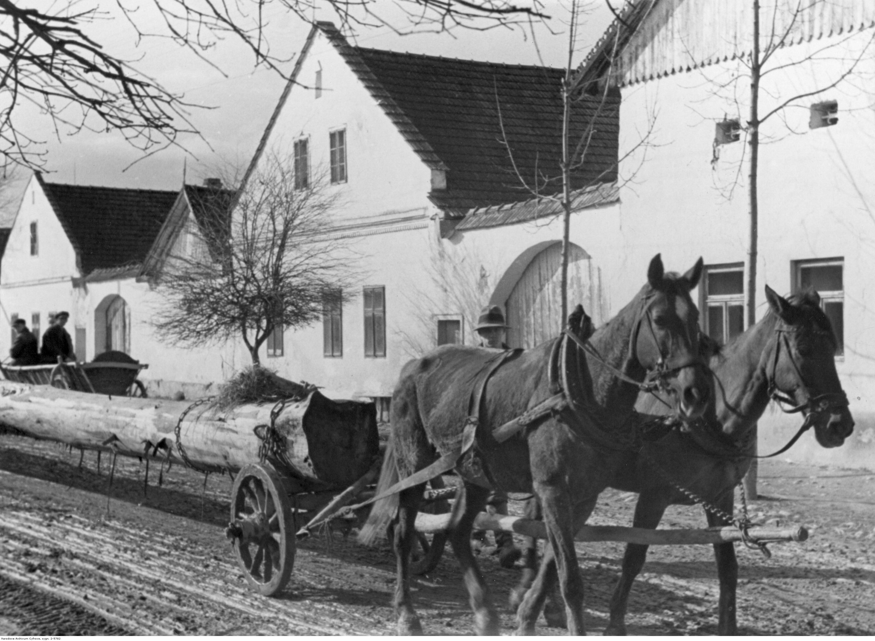 Gołkowice Dolne - w latach 1918 - 1933