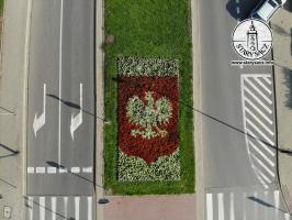 100 Rocznica Odzyskania Niepodległości - kwiaty w Nowym Sączu